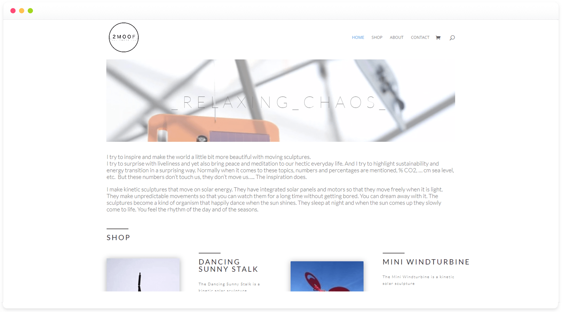 een professionele webshop laten maken