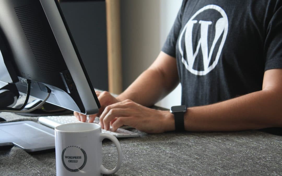 Goede WordPress website, waar bestaat die uit?